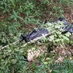 На Волыни милиция задержала подозреваемого в убийстве девушки