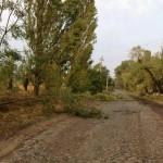 Сильные порывы ветра обесточили 21 населенный пункт Волыни