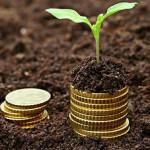 На Ровенщине получили почти 200 миллионов гривен платежей за землю