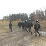 На Волыни усиливается охрана леса от нелегальных копателей