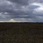 На Волыни владельцам земельных паев уже выплачено 151 млн грн арендной платы
