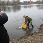 В Теремнівську водоем Луцка запущено 500 кг малька толстолобика белого и пестрого