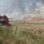 На Волыни пожар уничтожил 44 га пшеницы