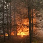 На Волыни сохраняется 5-ый класс пожарной опасности