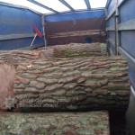 На Маневиччині задержали «Mercedes» с лісосировиною