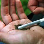 В Турийске полицейские изъяли наркотики