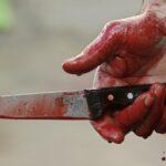 Волынянина за убийство жены приговорили к 15 годам