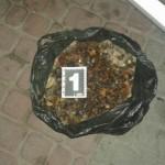 В Ковеле СБУ изъяла 47 килограммов янтаря