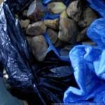 На Волыни у мужчины нашли более 5 килограммов контрабандного янтаря