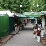 Цветочный рынок Луцка предлагают перенести