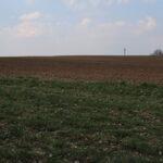 Гектар волынской земли стоит 1000 долларов